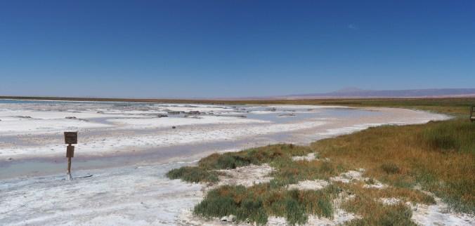 Laguna Cejar near San Pedro de Atacama