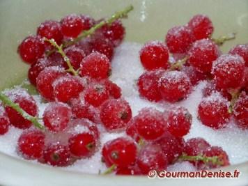 Fruits-cristallises-9__2_