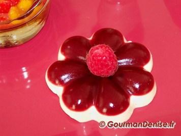 Pannacotta vanille framboises 9