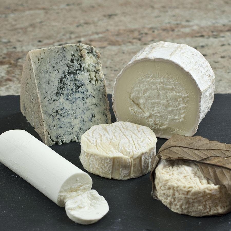 Buy Goat Cheese Sampler Gourmet Cheese Sampler