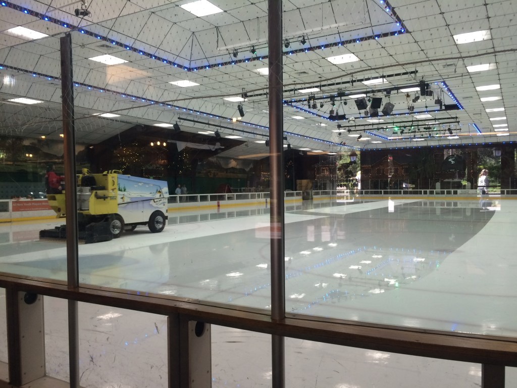 I was mesmerized by the Snoopy zamboni at the ice skating rink next to the museum