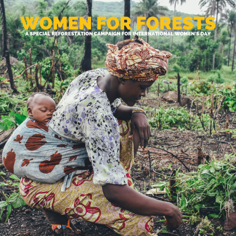 Women-for-Forests-03