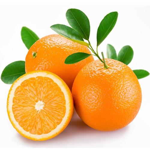 Arizona Oranges Gift Box – Gourmet Orchards