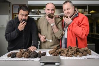les truffes 2015-106