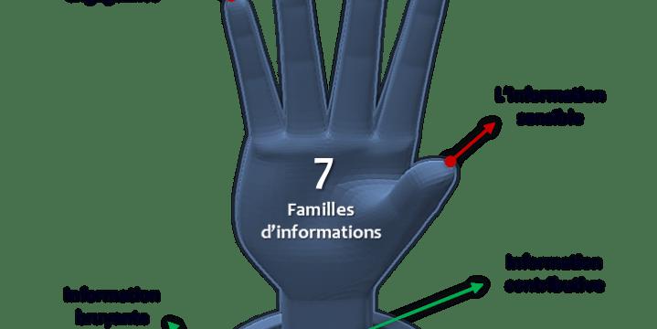 Les 7 familles d'informations du flux Information