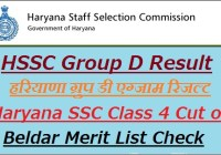 HSSC Group D Result 2019