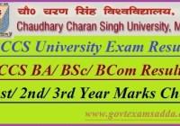 CCS University Result 2020