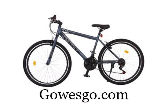 Sepeda Turanza 2706