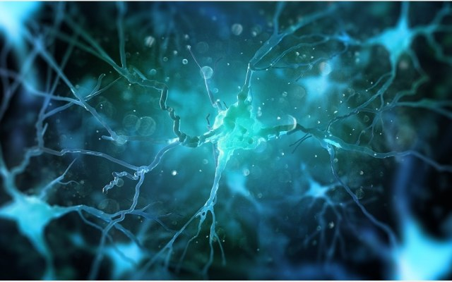 Can Cognitive Decline Be Predicted By Cardio Risk Scores?