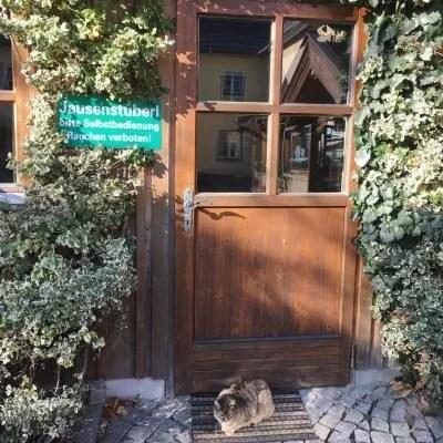 Tiergarten Walding, GoWithTheFlo9