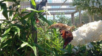 Filey Bird Garden & Animal Park