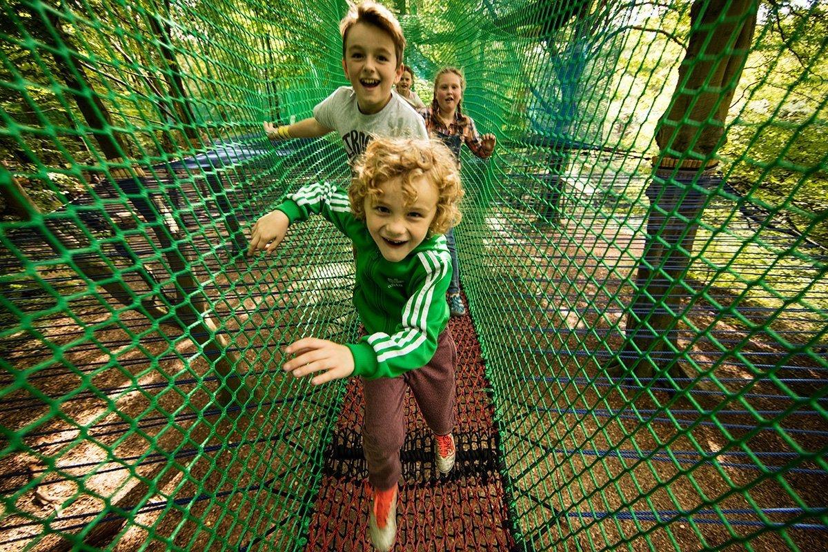 Treetop Trails Yorkshire