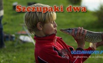 Szczupaki dwa gozdawaryby.pl