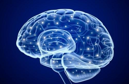 neurocirugia