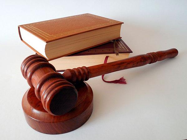 Informe Pericial Judicial
