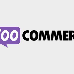 WooCommerce Xero Integration 1.7.37