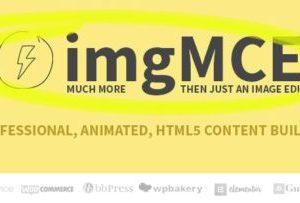 imgMCE 1.3.2 – Professional, Animated Image Editor