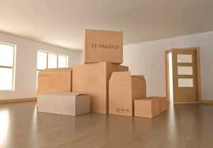 Guide for Out of state movers San Diego