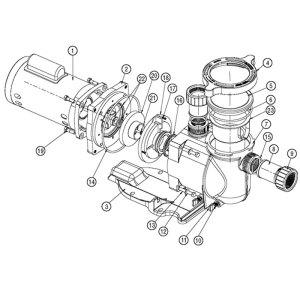 Sta Rite Motor Parts  impremedia