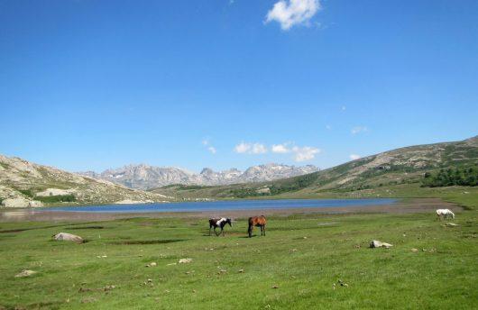Lac de Nino - GR20 - Corse