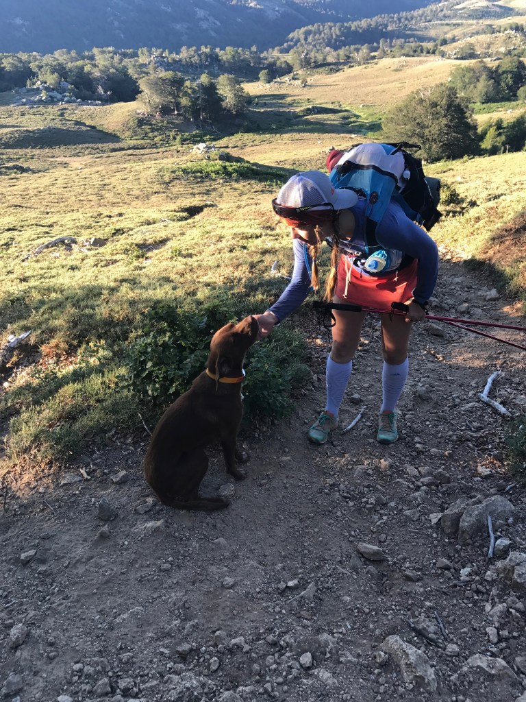 libby sauter meets a dog on the gr20 way