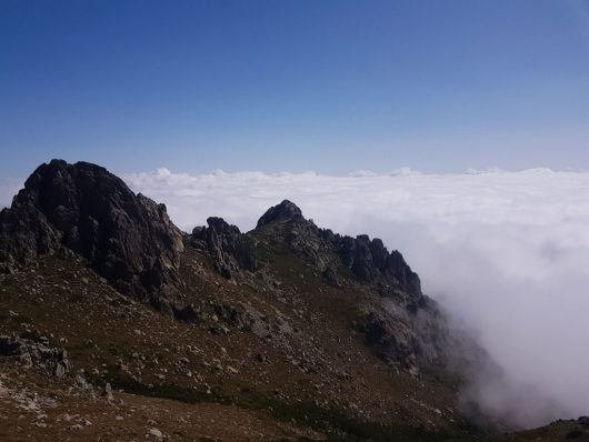 Montagne - Brume - Corse