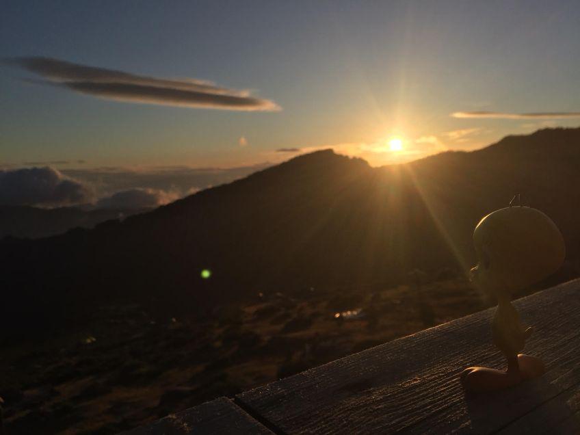 Titi - Après une belle journée - admire la montagne corse !