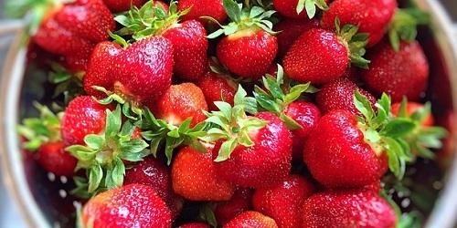 【ジョブチューン】絶品イチゴ!美人姫&白いちごの天使の実