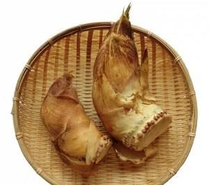 青空レストラン:白子筍(たけのこ)の通販・お取り寄せ!京都辻農園