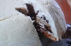 【ヒルナンデス】藤あや子のコストコのアレンジレシピ!ティラミスでドームケーキ