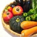 野菜、カボチャ、人参、トマト