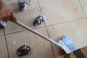 ヒルナンデス:プロスチームモップのお取り寄せ!頑固な汚れを落とす!お掃除家電