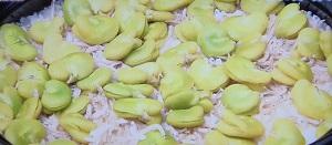 【鉄腕ダッシュ】ソラマメのレシピ!そら豆とシラスの土鍋ご飯&かき揚げ