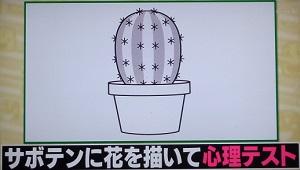 ハナタカ:心理テスト!サボテンに花を書いて気前の良さが分かる?
