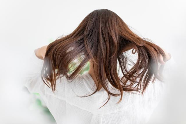 あさイチ:ダメージヘア改善法!ウォータートリートメント&ホホバオイルのお取り寄せ