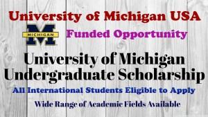University of Michigan Undergraduate Scholarship