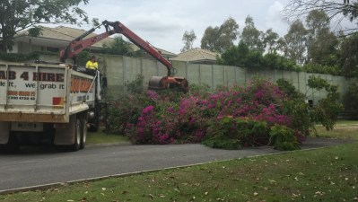 Household Green Waste Removal Gold Coast