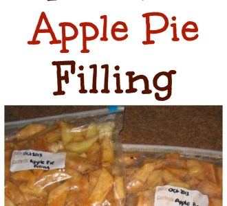 How to Make Freezer Apple Pie Filling on gracefullittlehoneybee.com