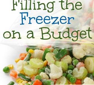 Filling the Freezer on a Budget on gracefullittlehoneybee.com