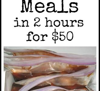 12 Easy Freezer Meals in 2 Hours for $50 on gracefullittlehoneybee.com
