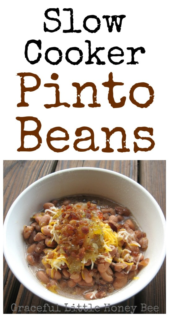 how to cook canned pinto beans on the stove