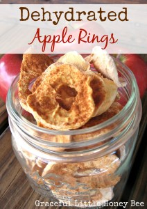Dehydrated apple rings are a healthy snack that kids love!