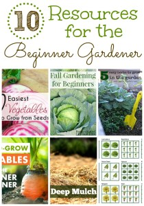 10 Resources for the Beginner Gardener on gracefullittlehoneybee.com