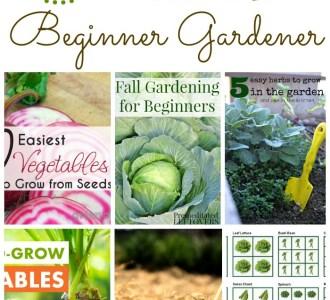 10 Resources for the Beginner Gardener on gracefullittlehoneybee.com