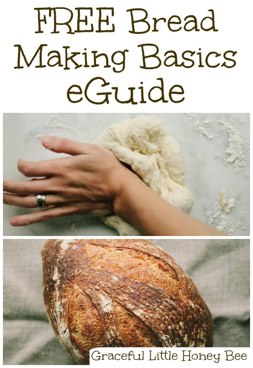 Download a free 24-page Bread Making Basics eGuide from Craftsy and learn how to make deliciously simple homemade bread!