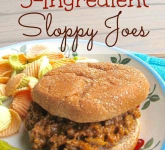 Easy 5-ingredient Sloppy Joes on gracefullittlehoneybee.com