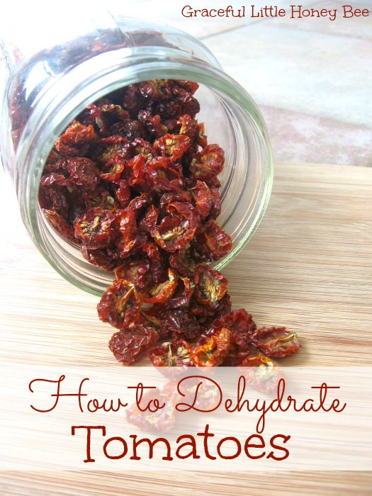 See how to dehydrate tomatoes for soups and stews all year long on gracefullittlehoneybee.com