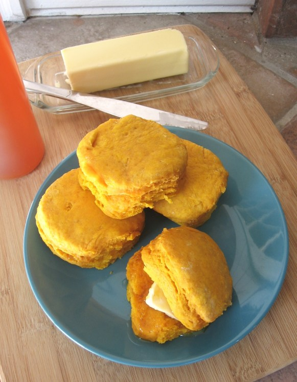 Homemade Pumpkin Biscuits