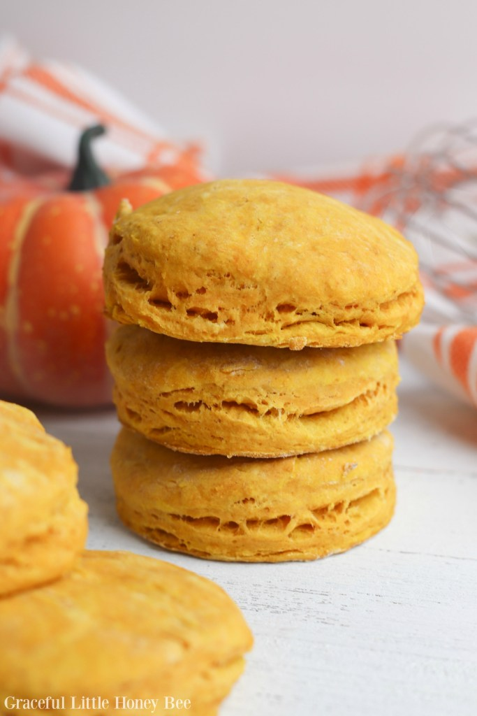 Try these super delicious Homemade Pumpkin Biscuits for a fun fall treat or side dish to any weeknight meal on gracefullittlehoneybee.com