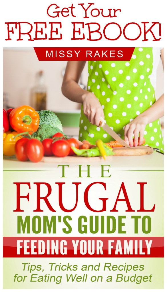 "Get your FREE EBOOK, ""The Frugal Mom's Guide to Feeding Your Family"" when you subscribe to weekly updates on gracefullittlehoneybee.com. This guide is filled with tips, tricks and recipes to help you feed your family healthy meals on a budget!"